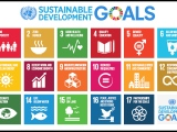 Role of Sustainability Post-COVID 19 and the 'Global Reset' in2021.